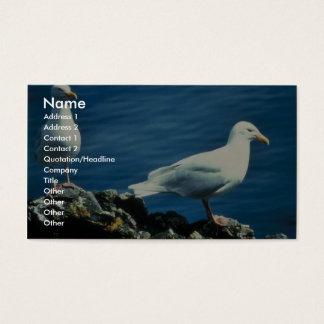 Glaucous Gulls Business Card