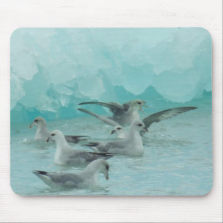 Glaucous gulls in Svalbard (Spitsbergen) Mouse Pad