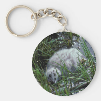 Glaucous-winged Gull Chick Keychains