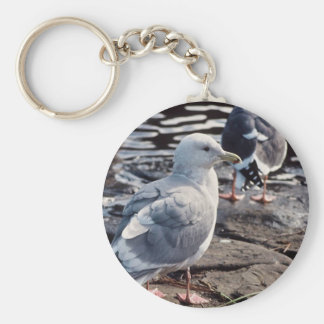 Glaucous-winged Gull Key Chains