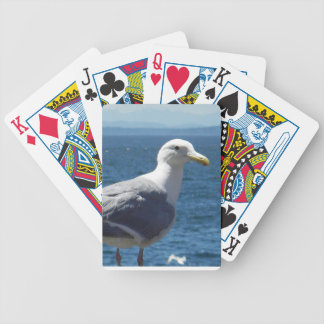 Glaucous-winged Gull Playing Cards
