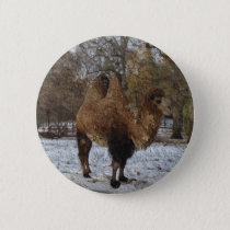 Glazed Camel Art #8083 Button