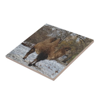 Glazed Camel Art #8083 Ceramic Tile