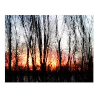 Glazed Sunrise Postcard