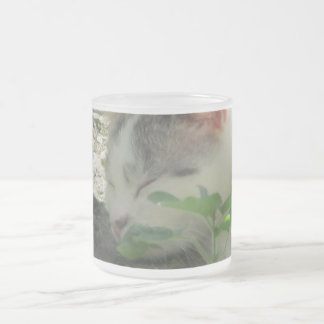 Glazes 296 ml cup from frosted glass cat