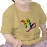 GLBT Capricorn T-shirt