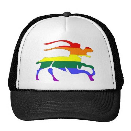 GLBT Pride:  Capricorn, Dec 23 - Jan 20 Mesh Hats