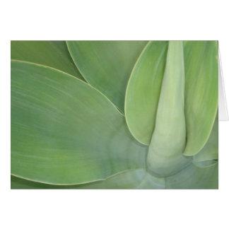 Glebe Reading Garden: Leaves Card