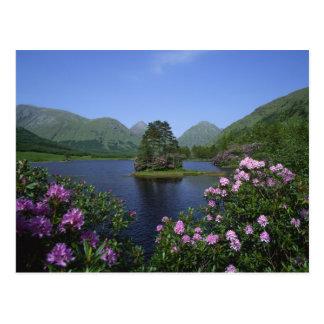 Glen Etive, Highlands, Scotland Postcard