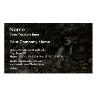 Glen Lyn., falls and upper bridge, Lynton and Lynm Double-Sided Standard Business Cards (Pack Of 100)