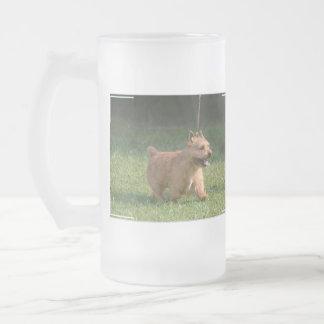 glen-of-imaal-terrier-10.jpg frosted beer mugs
