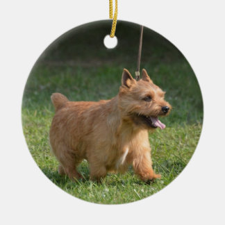 glen-of-imaal-terrier-10.jpg Double-Sided ceramic round christmas ornament
