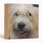 Glen of Imaal Terrier Binder