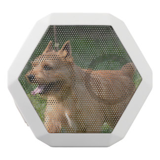 Glen of Imaal Terrier White Boombot Rex Bluetooth Speaker