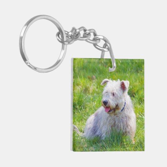 Glen of Imaal Terrier dog beautiful photo, gift Keychain
