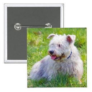 Glen of Imaal Terrier dog button, pin, gift idea