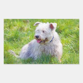 Glen of Imaal Terrier dog oblong stickers, gift Rectangular Sticker