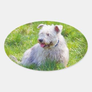 Glen of Imaal Terrier dog oval stickers, gift idea