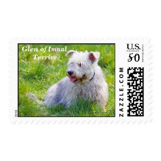 Glen of Imaal Terrier dog postage stamp