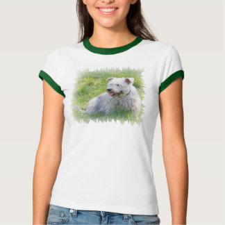 Glen of Imaal Terrier dog womens t-shirt, gift T-Shirt
