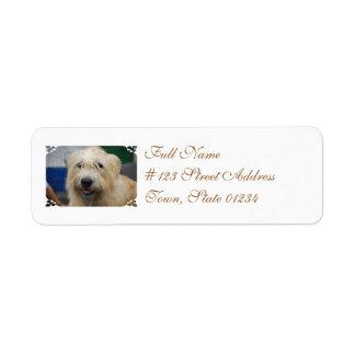 Glen of Imaal Terrier Mailing Labels