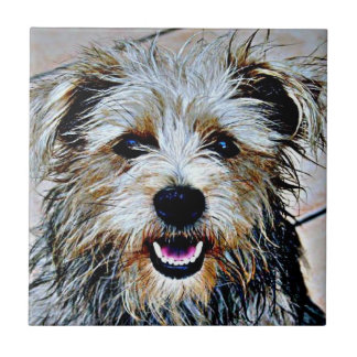 Glen of Imaal Terrier Pop Art Tile