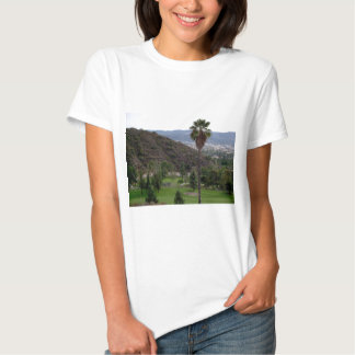 Glendale atop the Verdugo Mountain Range Tee Shirt