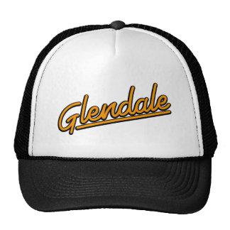 Glendale in orange trucker hat