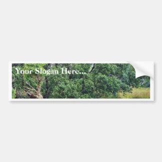 Glengesh Pass In Ireland Landscape Car Bumper Sticker
