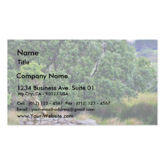 Glengesh Pass In Ireland Landscape Double-Sided Standard Business Cards (Pack Of 100)