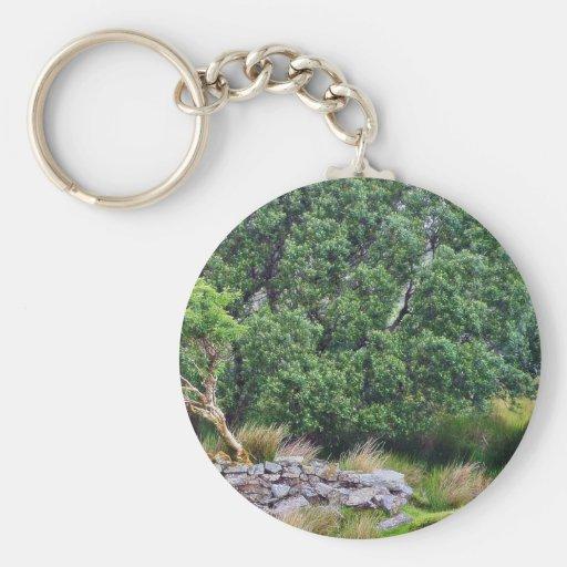 Glengesh Pass In Ireland Landscape Key Chains