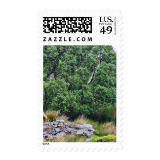 Glengesh Pass In Ireland Landscape Stamp