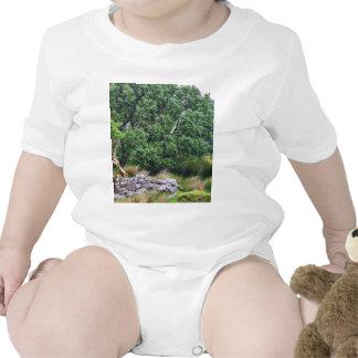 Glengesh Pass In Ireland Landscape Baby Bodysuits