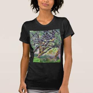 Glengesh Pass In Ireland Old Tree Shirts