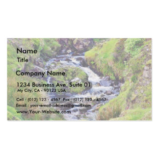 Glengesh Pass In Ireland Stream Brooks Water Moss Double-Sided Standard Business Cards (Pack Of 100)
