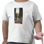 Glenwood Springs, Colorado Camiseta
