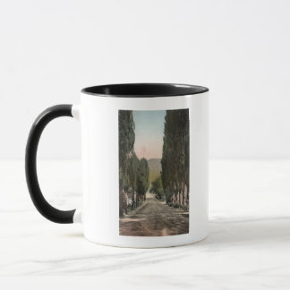 Glenwood Springs, Colorado Mug