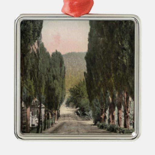 Glenwood Springs, Colorado Square Metal Christmas Ornament