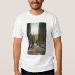 Glenwood Springs, Colorado T Shirts