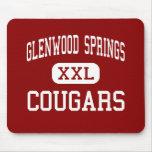 Glenwood Springs - pumas - Glenwood Springs Tapetes De Ratón