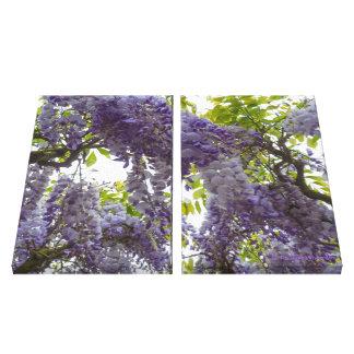 Glicinias de la púrpura de la fotografía de la bel impresión en lona estirada