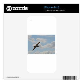 Glide iPhone 4 Skin