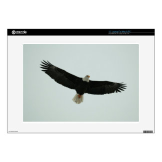"Gliding bald eagle decals for 15"" laptops"