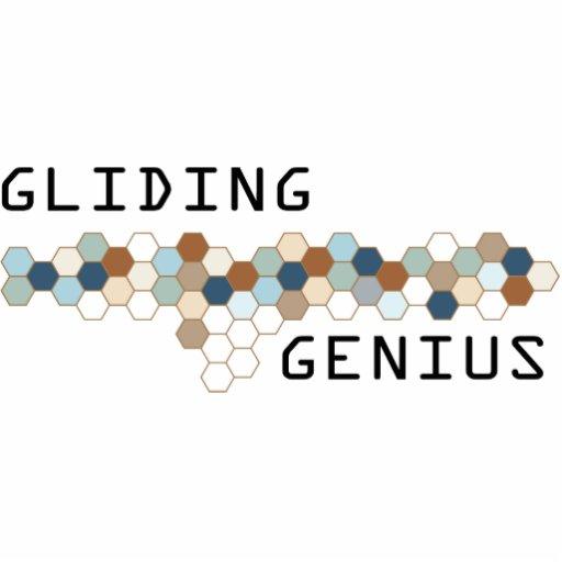 Gliding Genius Photo Sculpture Ornament