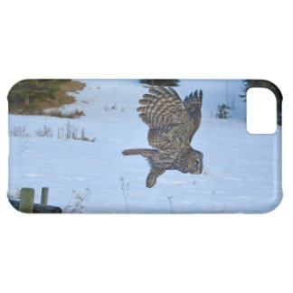 Gliding Great Grey Owl and Snow Wildlife Raptor Cover For iPhone 5C