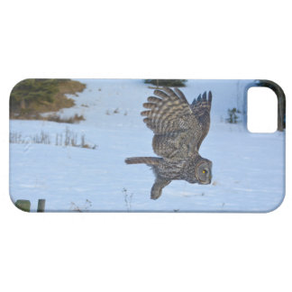 Gliding Great Grey Owl and Snow Wildlife Raptor iPhone 5 Case