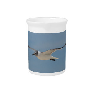 Gliding Laughing Gull Beverage Pitcher