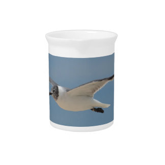 Gliding Laughing Gull Beverage Pitchers