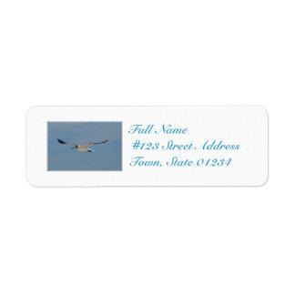 Gliding Laughing Gull Label