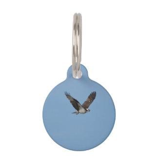Gliding Osprey Pet ID Tag